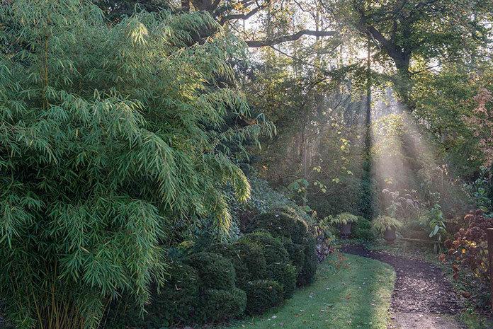 Jak ciekawie zagospodarować swój ogród na wiosnę